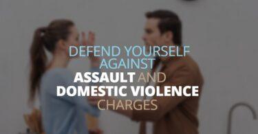 DEFENDYOURSELFAGAINSTDOMESTIC VIOLENCE CHARGES-EdwardLaRue